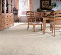 New Jersey Residential Carpet Cleaning